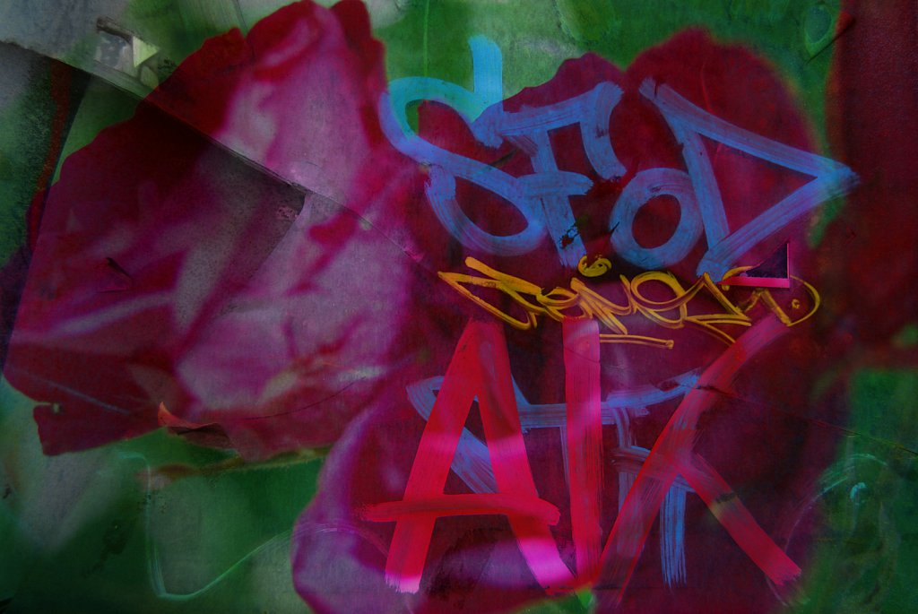 Collage16-Grafitti-meets-flowers.jpg