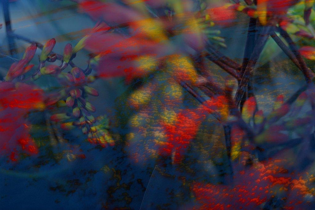 Double-exposure-London-Clouding-21.jpg