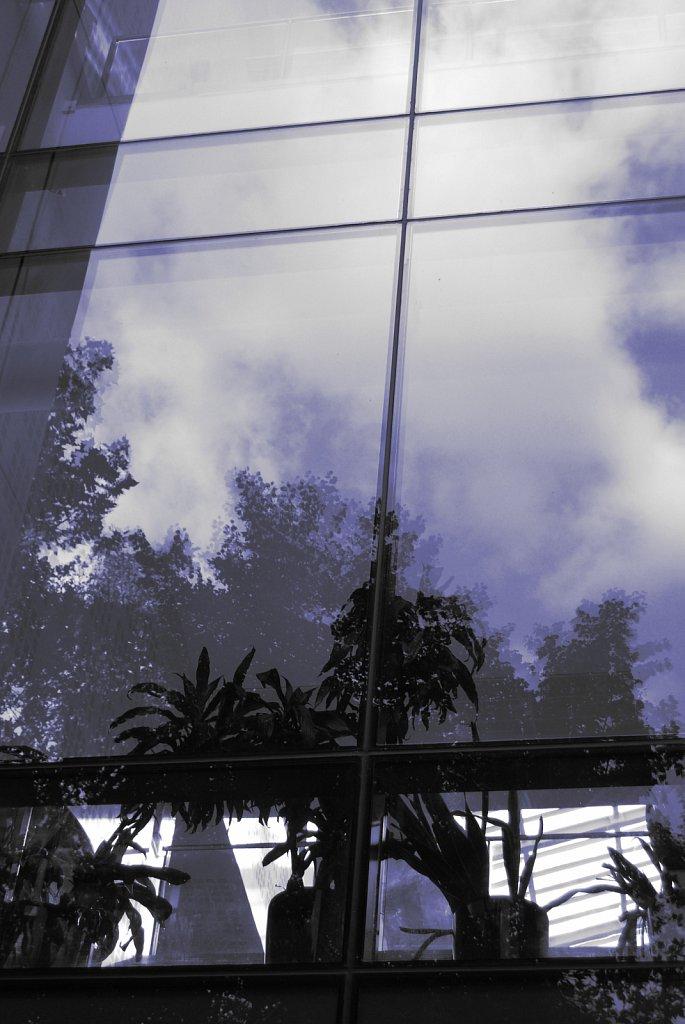 Urban-London-blue-black-colour-87.jpg